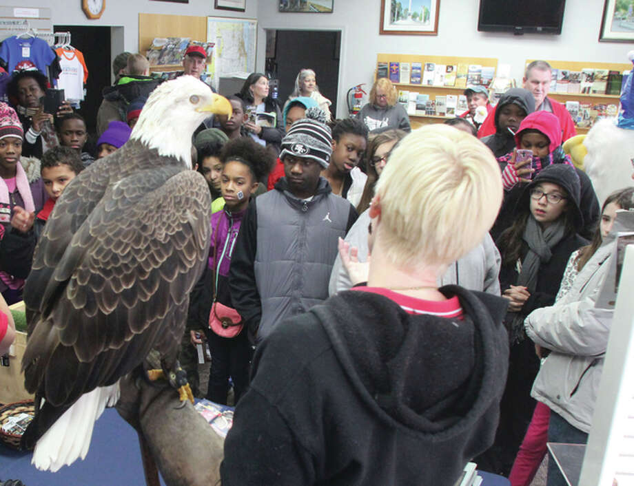 St. Louis students watch Liberty, a 5-year-old bald eagle from the World Bird Sanctuary, during the Alton Eagle Meet and Greet at the Alton Regional Convention and Visitors Bureau offices last year.