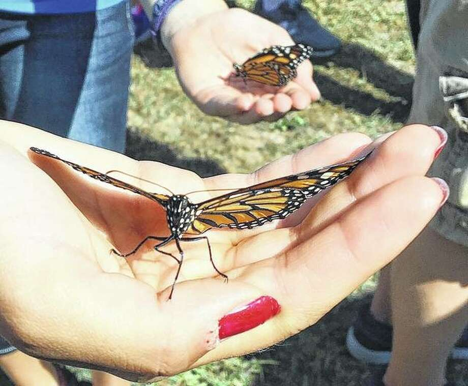 A congregant at First Presbyterian Church in Jacksonville prepares Sunday to release a butterfly. The event was part of the church's 190th anniversary celebration.