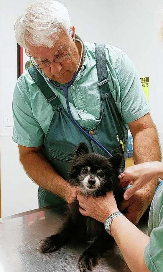 Veterinarian Bill Johnson listens to Pam Ince's dog Bear's heartbeat with a stethoscope at the Pittsfield Veterinary Clinic. Johnson has been a veterinarian for 40 years in Pike County. Jake Shane | Quincy Herald-Whig (AP)