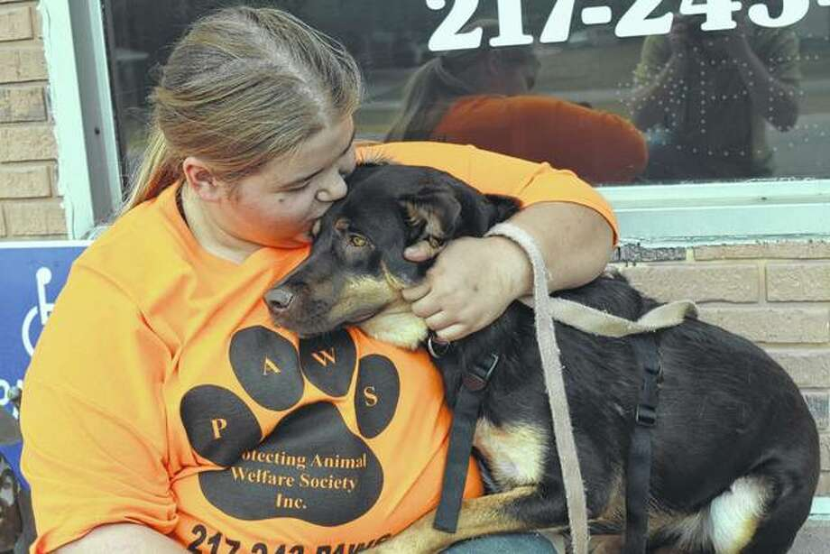 Morgan Morris-Dyer of Jacksonville, a longtime volunteer at Protecting Animal Welfare Society (PAWS), hugs Dawn, a German Shepherd mix, on Wednesday at PAWS headquarters in Jacksonville. Morris-Dyer was helping prepare for Saturday's annual Dog Gone Fun-raiser at PAWS. Photo: Greg Olson | Journal-Courier