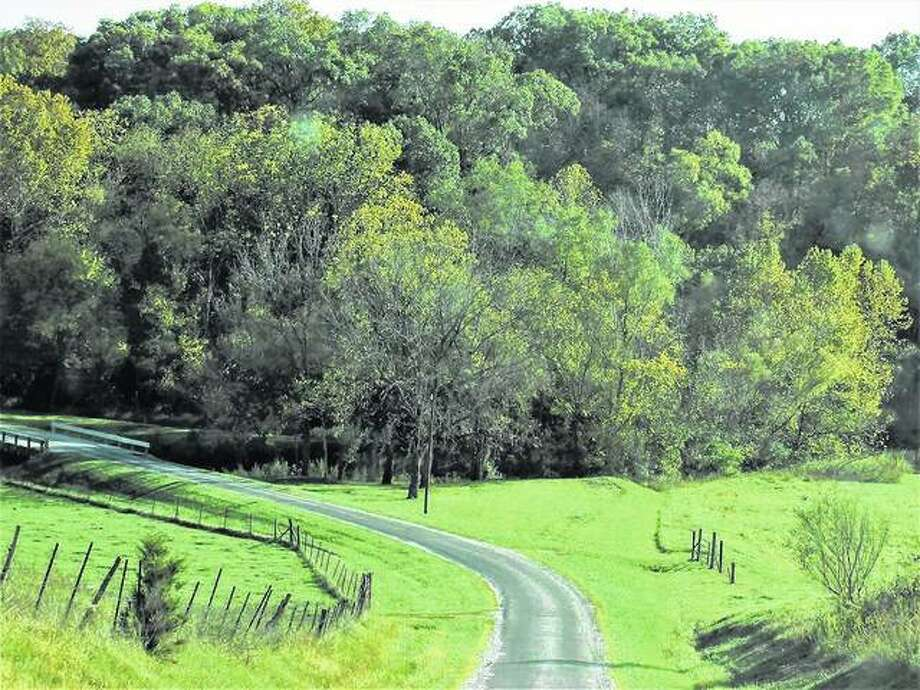 Autumn scenery remains unseasonally green along a country road in Macoupin County.