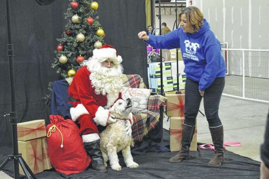 Abbi Stevens (right) tries Sunday to get Penny's attention while Penny was having her photo taken with Santa at Pet Supplies Plus. Pet owners were offered a chance to have their animals photographed with Santa as a lead-up to the holiday season.