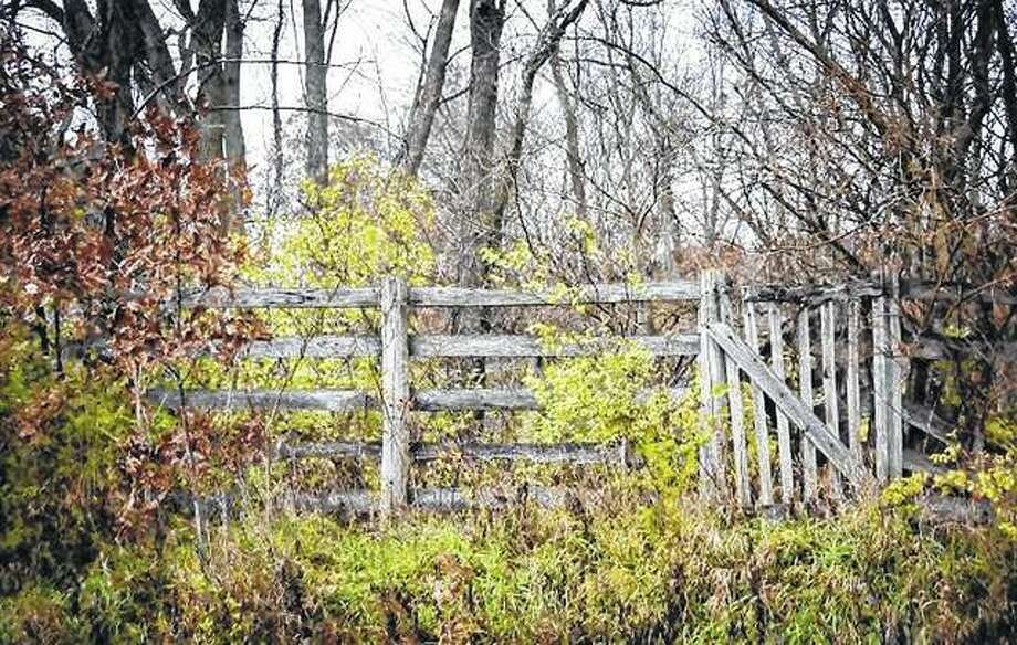 An old country fence and gate blend into their surroundings along a rural road.