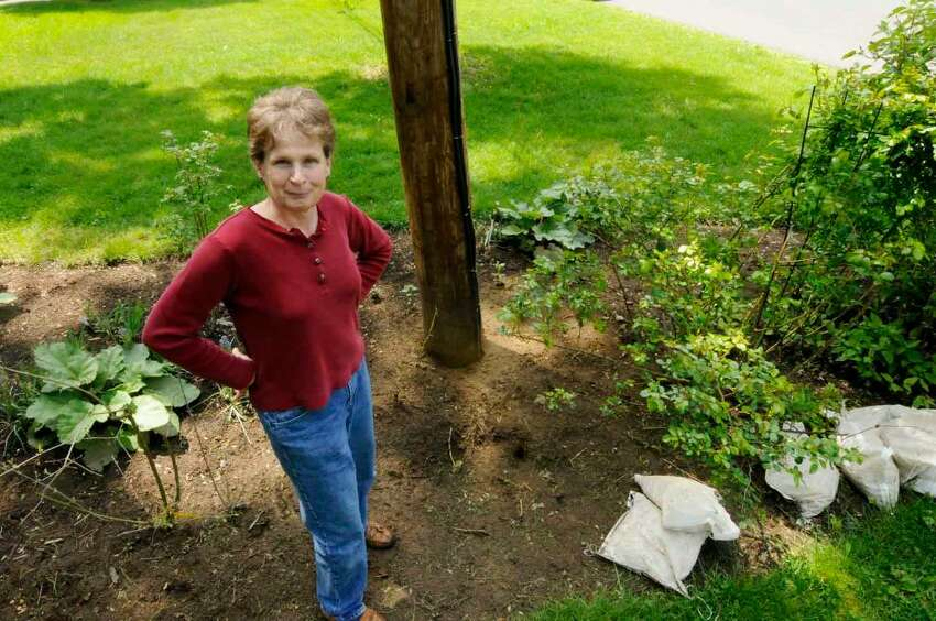 Delmar homeowner Jill Knapp wanted unsightly bags of rocks removed from a hole left when a utility pole was removed, but she did not know which utility was responsible. (Michael P. Farrell /Times Union)