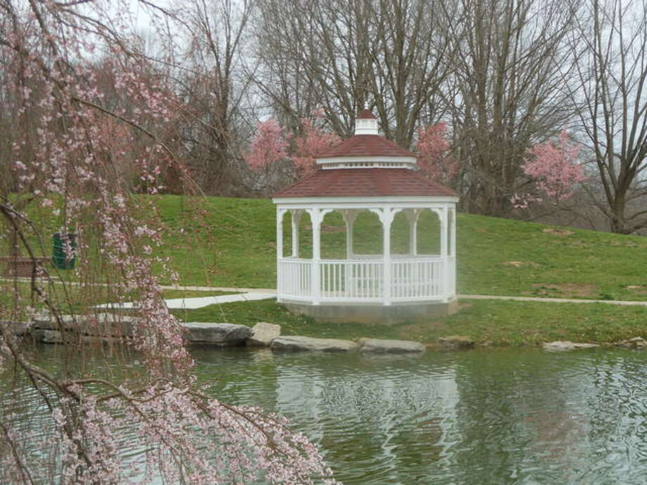 Five Okame ornamental cherry trees bloomed for the first time this spring behind the new gazebo at the Oriental Garden in Gordon F. Moore Park in Alton. A weeping cherry, foreground, was trimmed and was in full bloom last week before the cold temperatures. The citizens Oriental Garden Committee is seeking donations with which to buy more such trees.