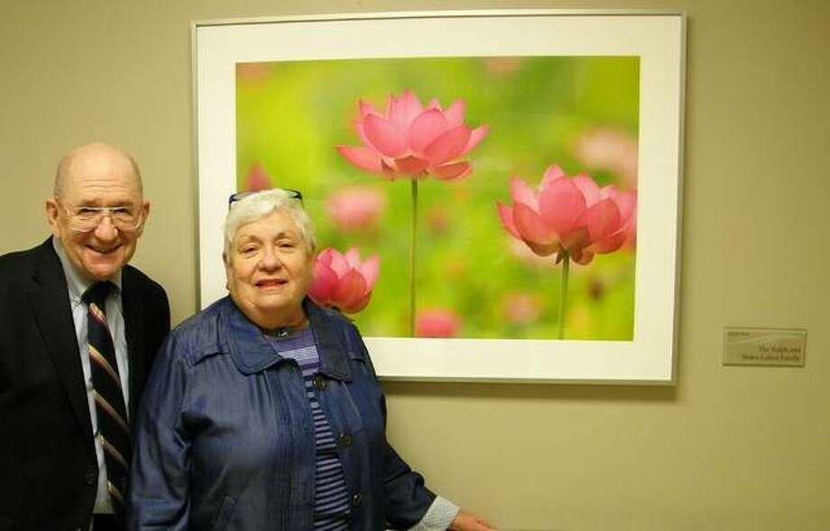 """Bob Luken and Barb Hinson sponsored this """"Pretty in Pink"""" artwork in honor of their parents, Ralph and Helen Luken, for the renovated Transitional Care Unit at Alton Memorial Hospital."""