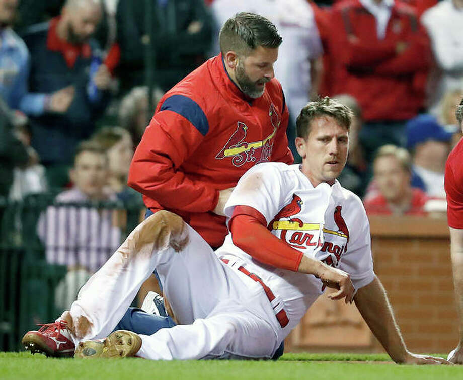 The Cardinals' Stephen Piscotty, front, is helped by a trainer after being hit in the head with a ball while scoring in the fifth inning of Tuesday night's against the Cubs at Busch Stadium. Photo: AP