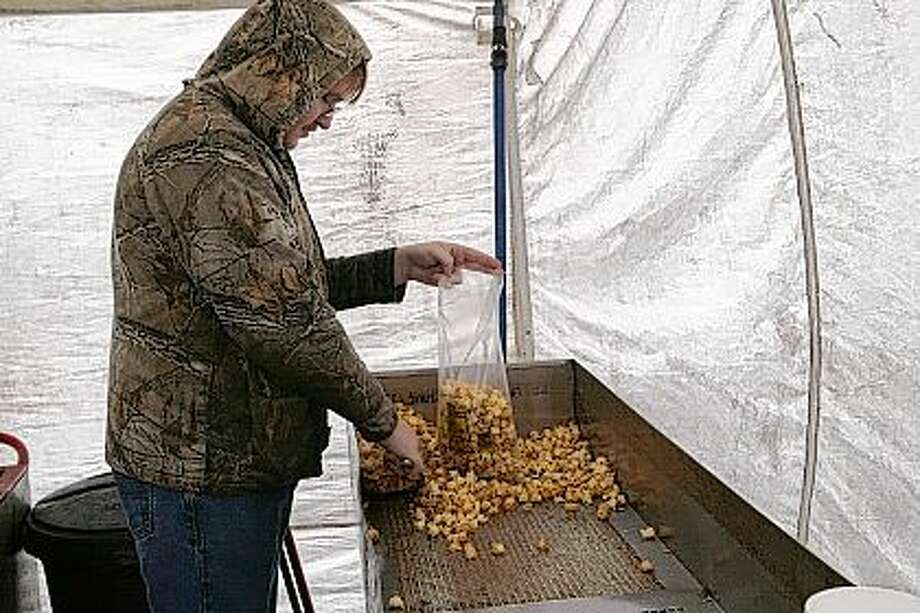 Despite the rain, Family Kettle Corn workers sold a few bags of the sweet and salty popcorn Friday in front of Pet Supplies Plus on West Morton Avenue. Here, Brandon Decker of Jacksonville fills a bag with kettle corn after cooking a batch of the treat. Photo: Greg Olson   Journal-Courier