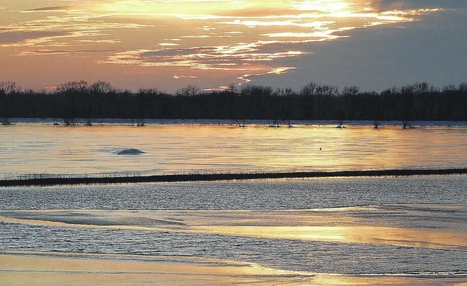 The sun reflects off flooded fields near Emiquon National Wildlife Refuge. Photo: Jeannie Hemphill | Reader Photo