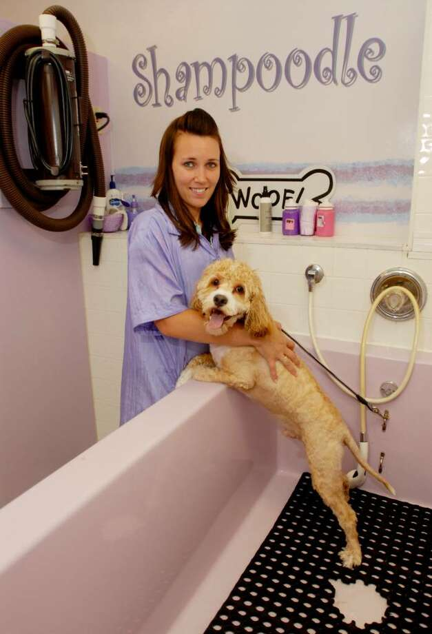 Fido not so fresh wash him yourself and save times union stephanie moon manager at shampoodle works with cody who had the solutioingenieria Gallery