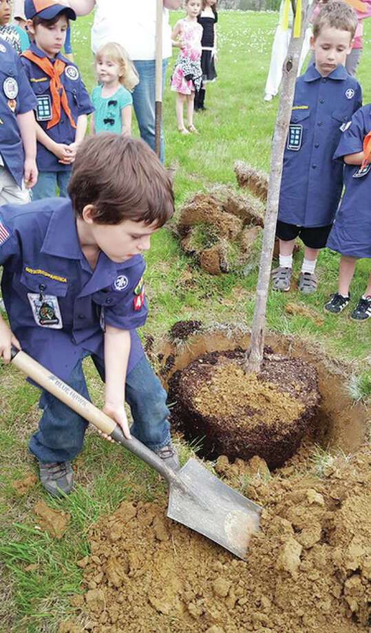 Ike Pinski, a member of Cub Scout Pack 4316 in Edwardsville, shovels dirt around a tree planted Tuesday at Glik Park in honor of the late Charles McBrien, a long-time scouting leader who died last June.