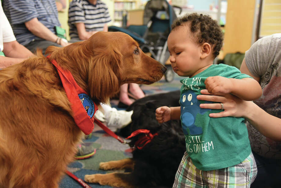 Jack, a 14-month-old golden retriever, gets familiar with young Zarion Nair Saturday at Hayner Library.