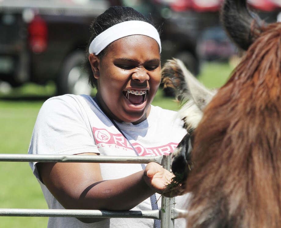 Courtesha Cannon, 14, of Alton, reacts as a llama takes grass from her hand at the petting zoo at the 25th annual Juneteenth Celebration at the James H. Killion Park in Alton.