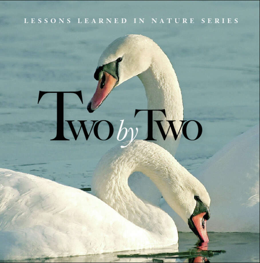 "Other Lessons Learned in Nature Quotes for Life titles are available for retail, including ""Two by Two,"" shown here, ""Think Deep,"" ""Small World,"" and ""Pet Therapy,"" which are sold online and at gift boutiques, including Jeni J's Unique Gifts and Guest Houses in Grafton. Photo: Image Used By Permission Of Deborah A. Lawrence