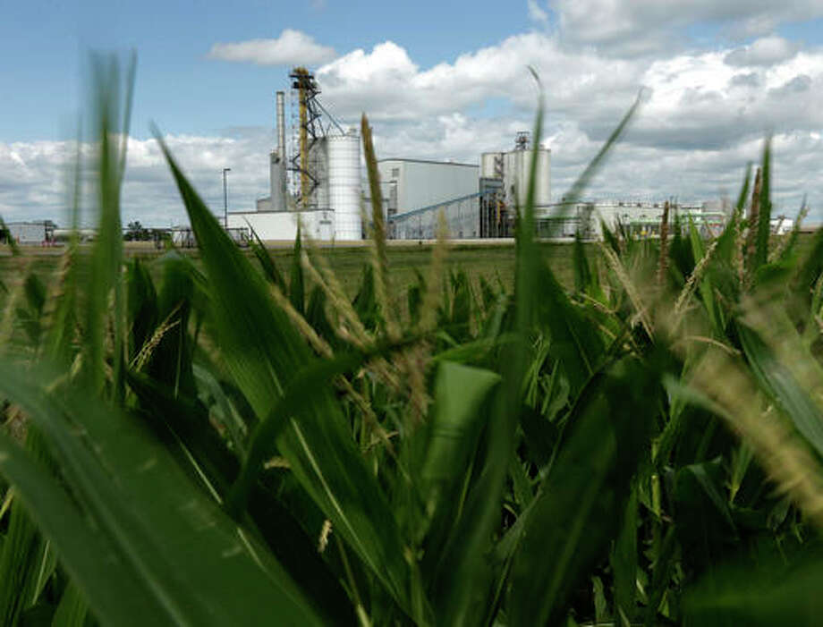 In this July 20, 2013, file photo, an ethanol plant stands next to a cornfield near Nevada, Iowa. The Obama administration has failed to study as legally required the impact of requiring ethanol in gasoline and ensuring that new regulations intended to address one problem do not actually make other problems worse, the Environmental Protection Agency inspector general said Thursday, Aug. 18, 2016. The conclusion in the new audit confirmed findings of an Associated Press investigation in November 2013.