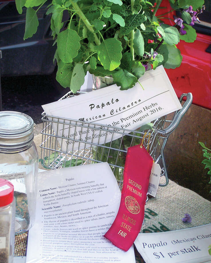 Alton gardener Clifford Clark won second place in an Illinois State Fair competition for his Mexican cilantro, pictured here with a winning red ribbon.
