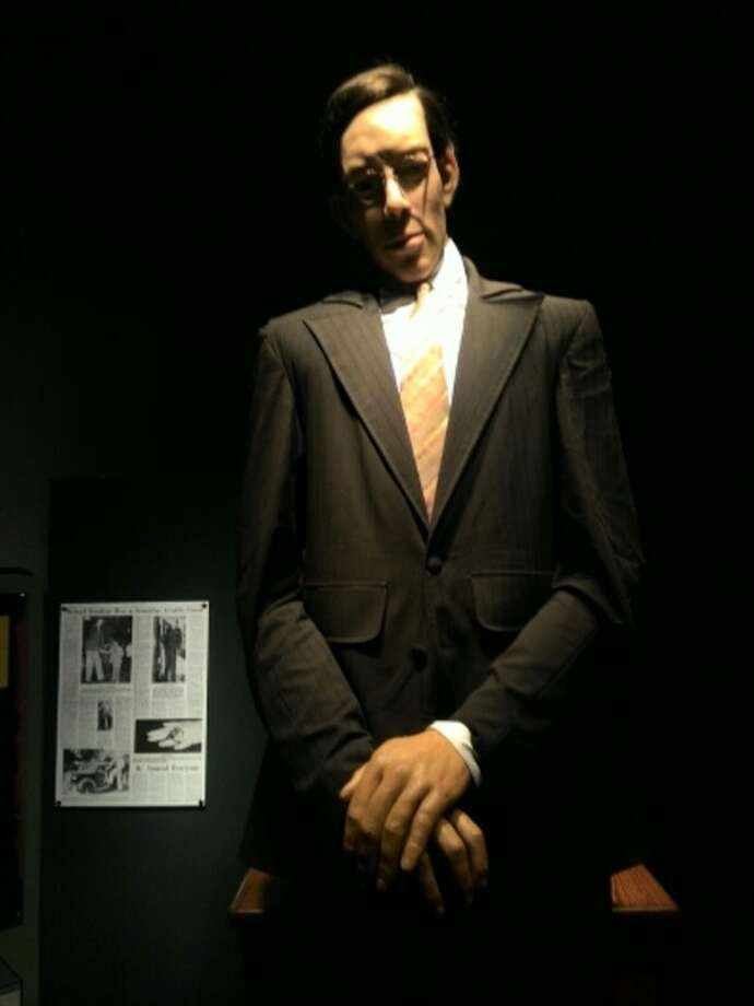 The exhibit includes oddities and unique specimens from across the globe including prehistoric animal replicas, an albino porcupine and a life-sized animatronic Wadlow which stands from a replica of his chair next to a measuring stick.