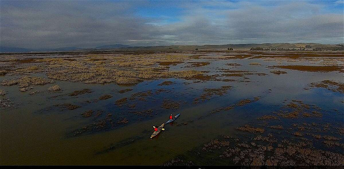 Chronicle outdoors writer Tom Stienstra and wetlands biologist Robert Eddings paddle in Suisun Marsh in the Lower Delta