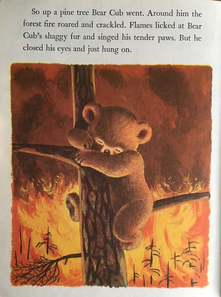 "A page from ""Smokey the Bear."""