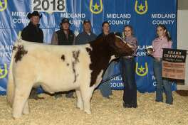 Grand Champion steer shown by Kendahl Nix