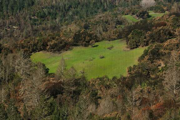A patch of green meadows is seen from the Stern Trail at Sugarloaf Ridge State Park in Santa Rosa, Calif. Tuesday, Feb. 13, 2018.