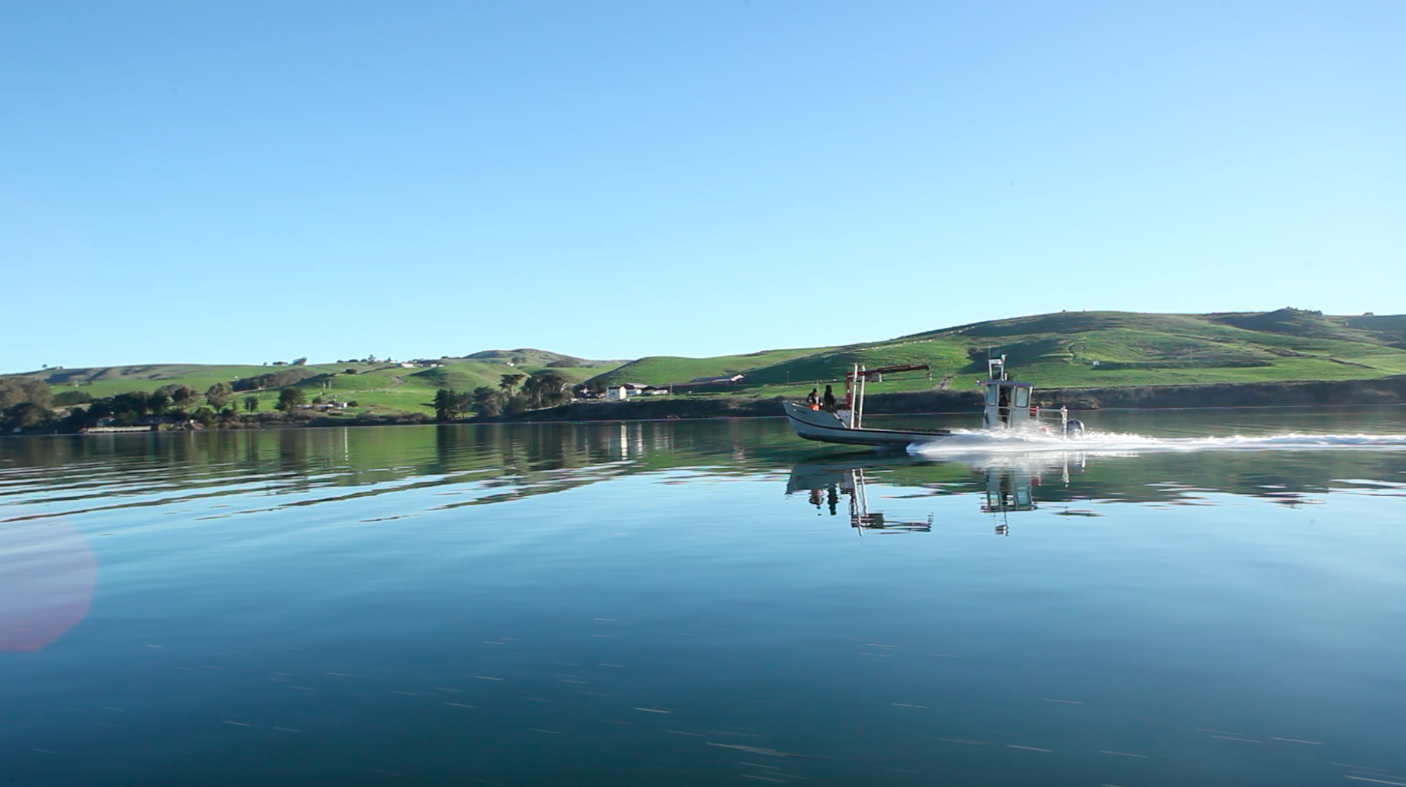 tomales men Sonoma county sheriff's office deputies safely rescued a stranded kayaker in  tomales bay on saturday.