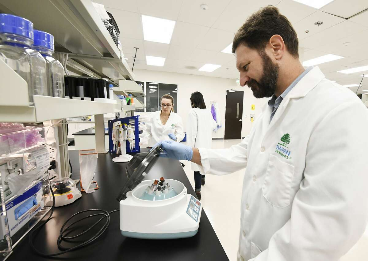 Michael Catania, vice president of product development, works with patient samples at Banyan Biomarkers in San Diego.