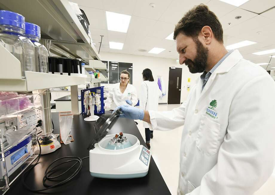 Michael Catania, vice president of product development, works with patient samples at Banyan Biomarkers in San Diego. Photo: Denis Poroy, Associated Press