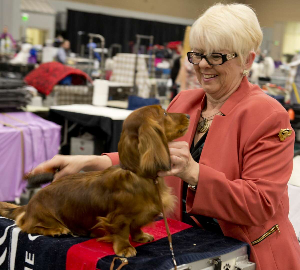 Jeanie Wilson combs her dog 02/15/18 at the West Texas and Big Spring Kennel Club's Dog Show at the Horseshoe Pavilion. Tim Fischer/Reporter-Telegram