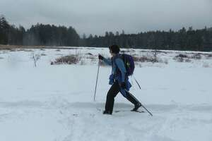 Skiing by Alder Pond on the way into Crane Pond in the Adirondacks. (Herb Terns / Times Union)
