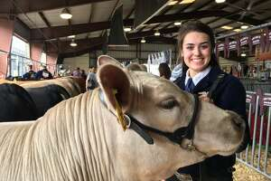 Cinco Ranch High School juniorRachael Wheeler raised the grand champion steer which will be auctioned Saturday at the Katy Independent School District FFA Livestock Show & Rodeo. His name is Jax.