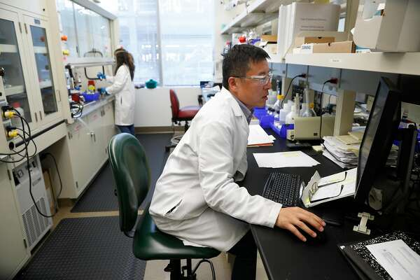 Medicinal chemist Michael Ren works on the pharmaceutical lab at the headquarters of Nektar Therapeutics  on Thursday Feb. 1, 2018, in San Francisco, Calif.