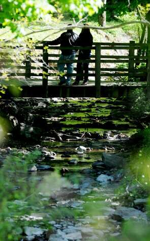Black Creek flows under a foot bridge adjacent to one of the picnic areas in John Boyd Thacher State Park. (Luanne M. Ferris / Times Union) Photo: LUANNE M. FERRIS