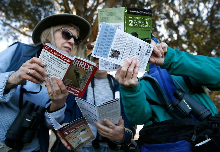 Laurie Porter (left) compares field guides with Sharon Alkire and Beth Lalonde during the Great Backyard Bird Count at Aquatic Park in Berkeley, Calif. on Saturday, Feb. 17, 2018.
