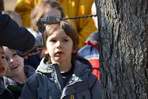 """The Ansonia Nature and Recreation Center, 10 Deerfield Lane, will host """"Maple Sugaring for Families"""" at 11 a.m. March 3, 2018. Photo courtesy of the Ansonia Nature and Recreation Center."""