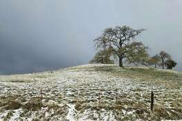 Areas of Monterey County got a light dusting of snow on President's Day thanks to a cold spell that recently hit California.