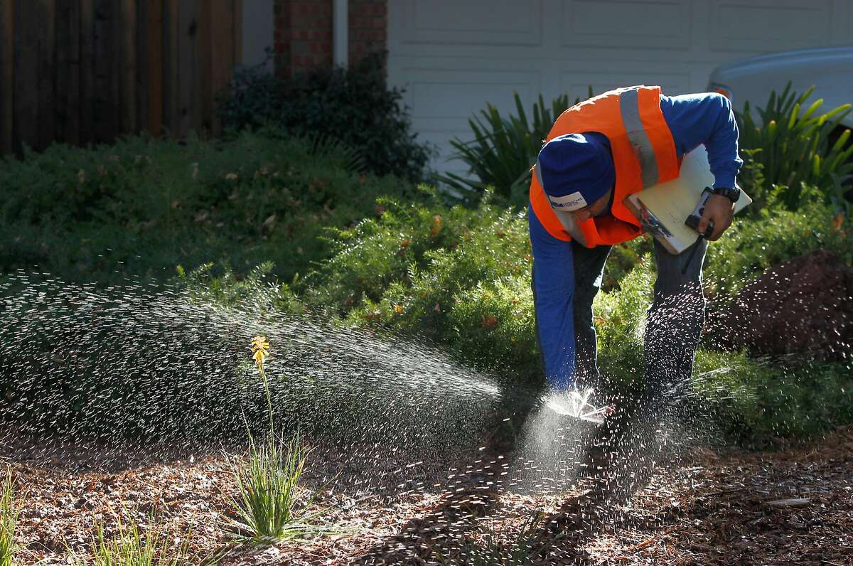 Sam Anguiano adjusts a high efficiency nozzle to a sprinkler head to complete a project converting a lawn to a drought resistent sustainable garden in Concord.
