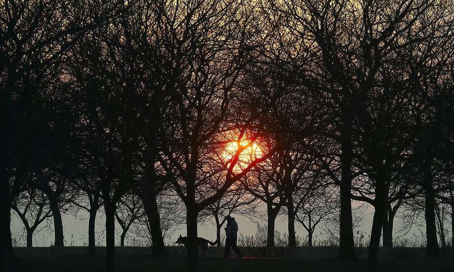 As the sun sets, a man walks his dog, Thursday, Feb. 15, 2018, at East Shore Park in New Haven. Photo: Catherine Avalone, Hearst Connecticut Media