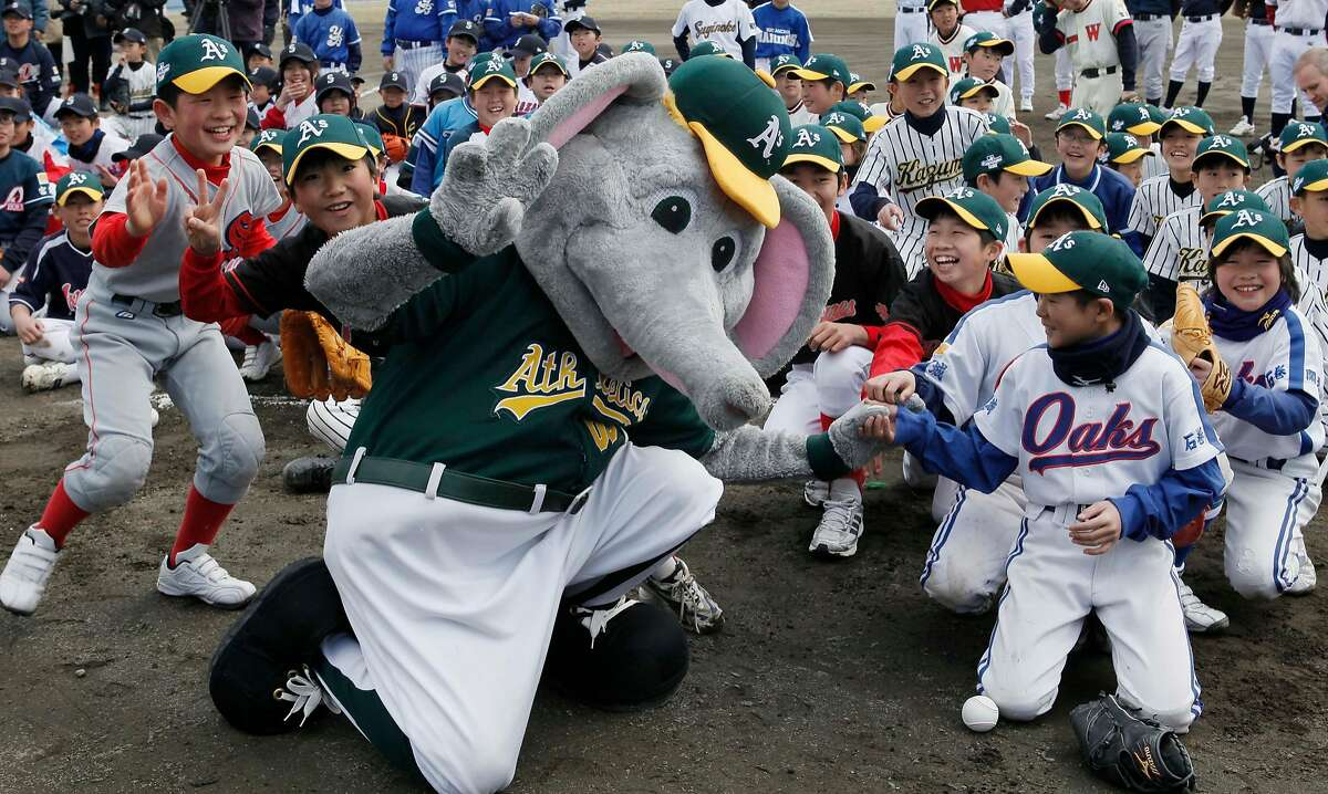 Young Japanese baseball players play with Stomper, the Oakland Athletics mascot, during a baseball clinic by major leaguers of the Athletics and the Seattle Mariners at Ishinomaki Municipal Baseball Stadium in tsunami-hit Ishinomaki, northeatern Japan, Tuesday, March 27, 2012. The major leaguers, currently in Japan to open the MLB's 2012 season in Japan on Wednesday and Thursday, made a friendly visit. (AP Photo/Koji Sasahara)