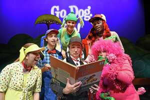 """Childsplay's musical for preschoolers, """"Go, Dog. Go!,"""" comes to the Quick Center for the Arts at Fairfield University on Feb. 25. Brynn Lewallen, Green Dog, is at the top of the pyramid."""