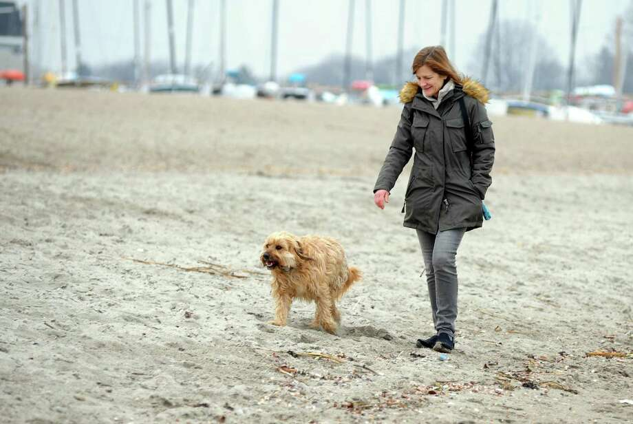 Lisa Lane, of Fairfield, spends some time walking along Jennings Beach with her dog Chester on Feb. 15. Photo: Christian Abraham / Hearst Connecticut Media / Connecticut Post