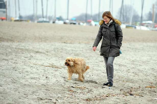 Lisa Lane, of Fairfield, spends some time walking along Jennings Beach with her dog Chester on Feb. 15.