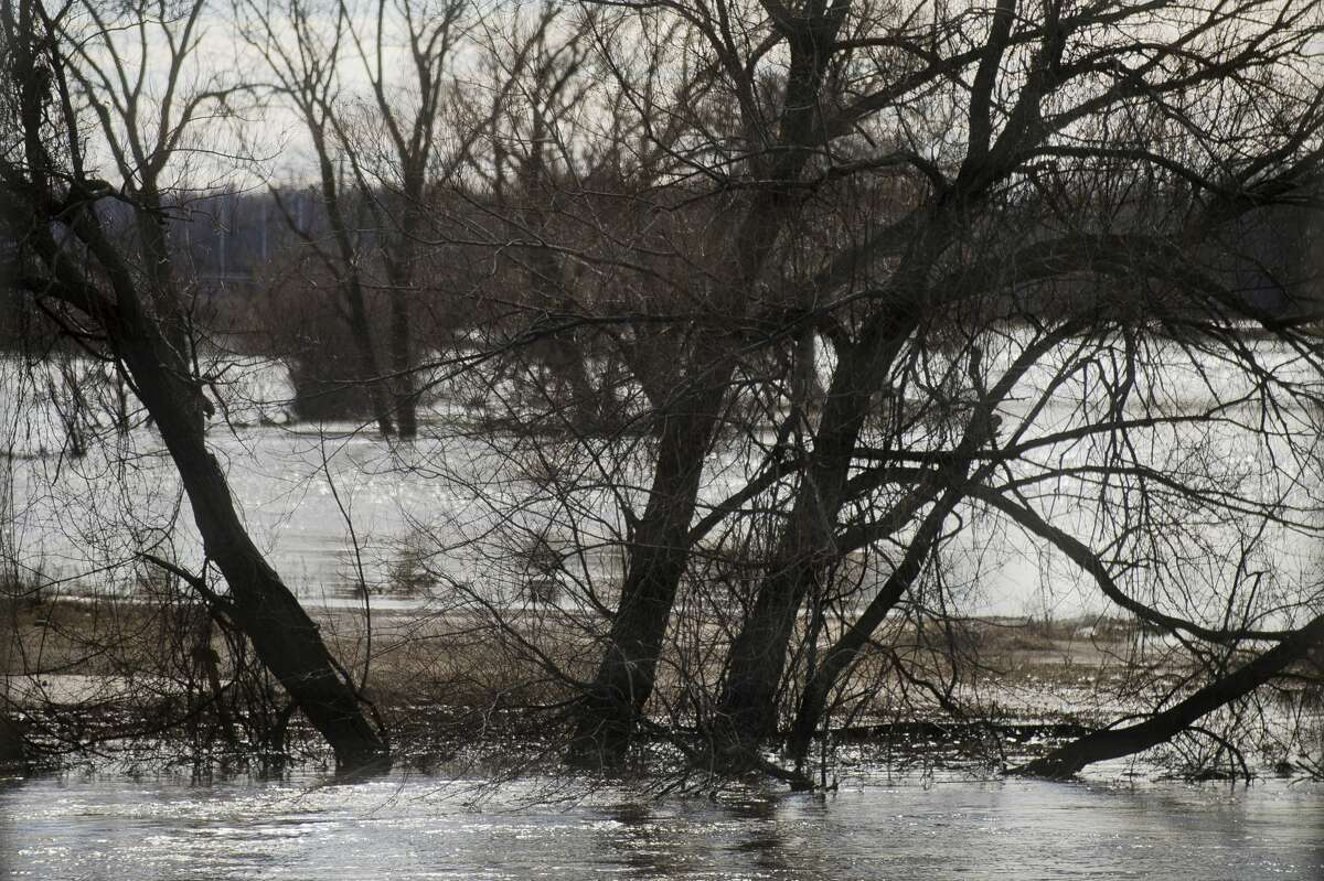 Water spills over the banks of the Tittabawassee River on Thursday, Feb. 22, 2018 after river flooded in downtown Midland. (Katy Kildee/kkildee@mdn.net)
