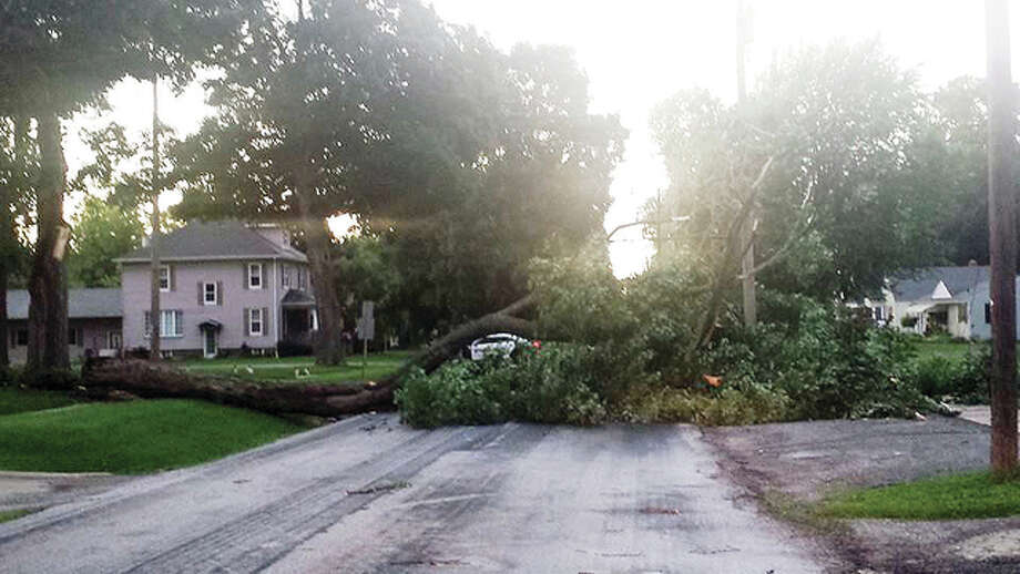 Photos courtesy Gone Rogue Radio Strong winds toppled a tree across Clay Street in Jacksonville on Monday.