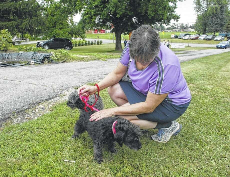 Jan Foehner of Springfield gets to know the two dogs — Mickey and Minnie — that she adopted Saturday from the Protecting Animal Welfare Society in Jacksonville during the organization's fifth annual Dog Gone Fun-raiser. Minnie is the dark-colored pooch. Photo: Greg Olson | Journal-Courier
