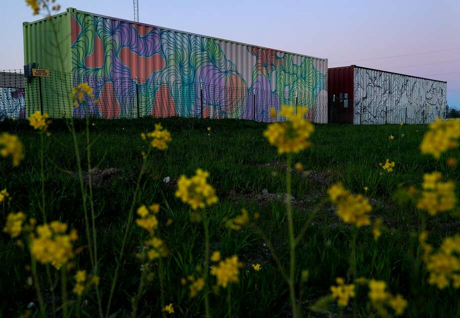Painted shipping containers at Oasis Village in Santa Rosa have been abandoned after the city refused to approve the temporary housing installed by Burning Man volunteers. They will be returned to Nevada. Photo: Carlos Avila Gonzalez, The Chronicle