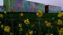 Painted shipping containers at Oasis Village, a proposed and since-abandoned emergency housing center for North Bay fire victims in Santa Rosa, Calif., on Monday, February 12, 2018. Oasis Village was a series of temporary housing structures built after the fires by volunteers from the Burning Man community. The group tried (in vain) to convince the city of Santa Rosa that the village was ready to house people who had been displaced by the fires. The structures are six modified shipping containers and one modified 53-foot trailer. Inside there used to be beds and refrigerators, but now those have been removed, and the containers are locked -- the volunteers ultimately dismantled the project after getting sick of dealing with the city's red tape.