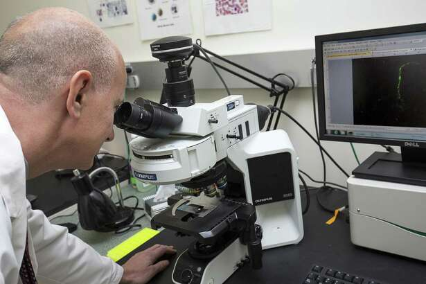 Dr. Paul Fiedler, chair of pathology and laboratory medicine at WCHN in Danbury, looks through a microscope while an example of the spirochetes is displayed on the monitor to his left. In this detection method the spiral-shaped Lyme disease bacterium were coated with protein that gave them a fluorescent green glow.