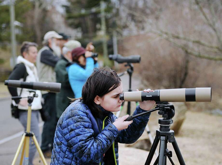 Kaela Knoor, 11, of Stamford, took part in the Great Backyard Bird Count, led by Audubon Naturalist and Environmental Educator Ted Gilman, at Grass Island in Greenwich, Conn., Friday, Feb. 16, 2018. Knoor said her favorite bird is the Red-tailed Hawk. The Great Backyard Bird Count is a world-wide event launched by the Cornell Lab of Ornithology and National Audubon Society in 1998, and lasts from Feb. 16 - 19. Birders collect data on birds counted in real-time, that is posted to the Great Backyard Bird Count web-site:http://gbbc.birdcount.org Photo: Bob Luckey Jr. / Hearst Connecticut Media / Greenwich Time