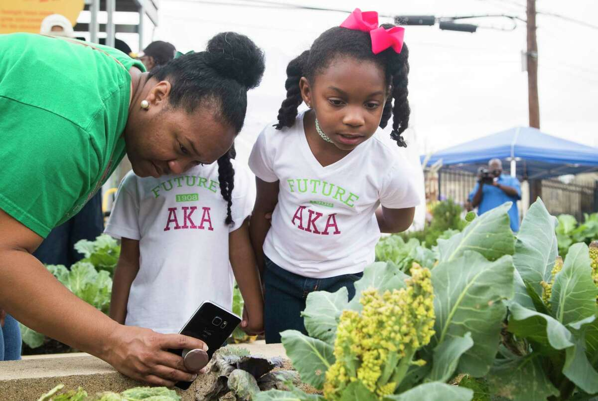 Dameka Harrison and her daughters Blair, right, 8, and Chloe, 4, check out the small beetles on the plants in the garden at the Palm Center Saturday.